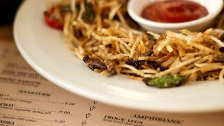 Gli insetti come cibo sostenibile: entomofagia in Italia
