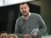 1024px-Discorso_Matteo_Salvini,_Raduno_di_Pontida_2013_(cropped)